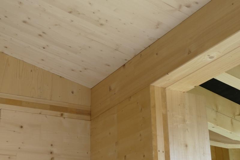 ekologicke CLT panely a drevodom